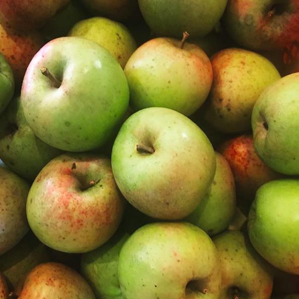 印度 リンゴ